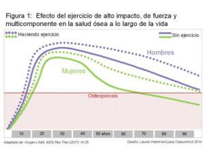 Evolución de la Masa Ósea con la Edad, en función de la actividad física o el sedentarismo. Dr. Jose Aramendi de Osasun Kirol en el Foro Salud Sendagrup, Mayo 2018